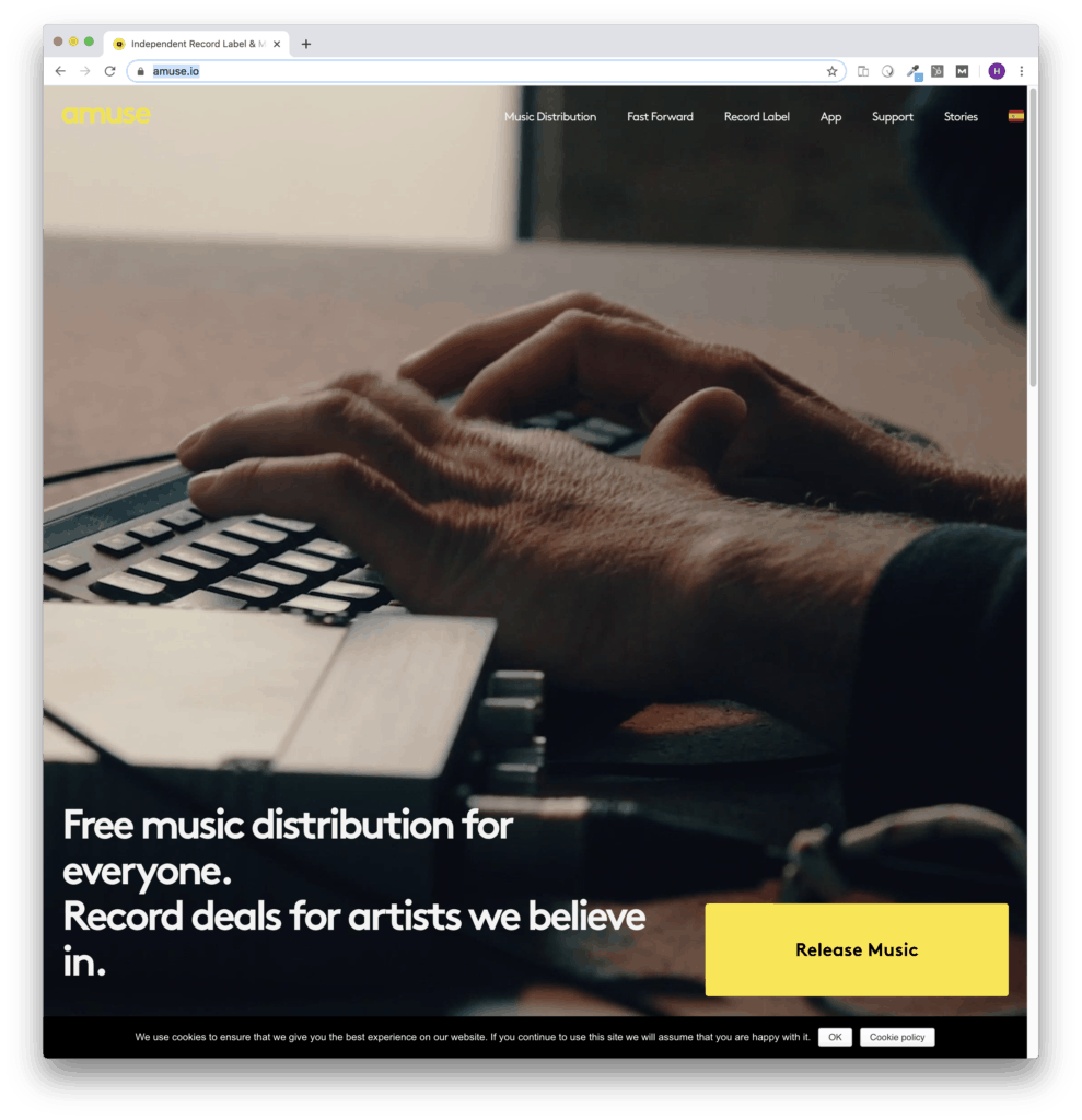 amuse music distribution services & label